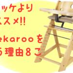 ハイチェアならストッケより「Keekaroo」を買うべき理由8コ